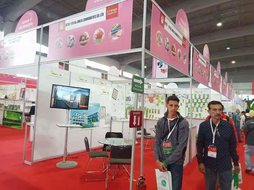 China (Mexico) trade fair 2018